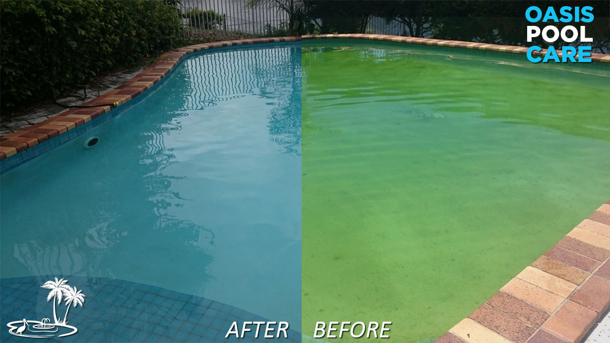 Green Pool Fix